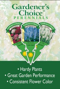 Gardener's Choice Perennials