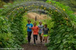 Ultimook Running Camp