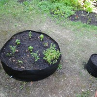 A Raised Garden Bed Made of Fabric