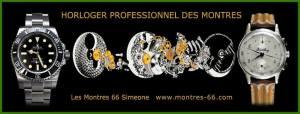 les montres 66 simeone