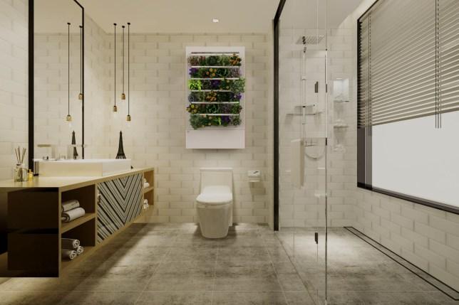 Smart Indoor Garden Bathroom
