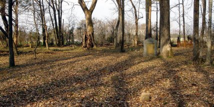 Harris Family Burying Ground on the property of Kings Dominion Park in Virginia (Cedar Hill). Photo taken 15 Mar 2007, looking west inside cemetery. It is believed to be the oldest cemetery in Hanover County, Virginia (photo credit: Gary Violette).