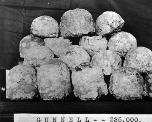 View of 'sponge' gold from a mine on the Gunnell Vein, in Gilpin County, Colorado. (Denver Public Library Digital Collections, between 1880-1900)