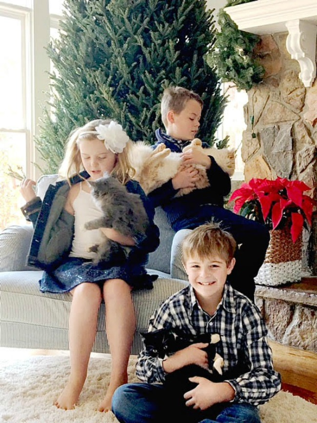 Tips for an Amazing Christmas Card Photo - Duke Manor Farm