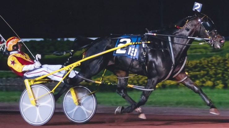 Dr Lon winning a race at Pocono Downs on July 25, 2011. Trained by Brad Irvine