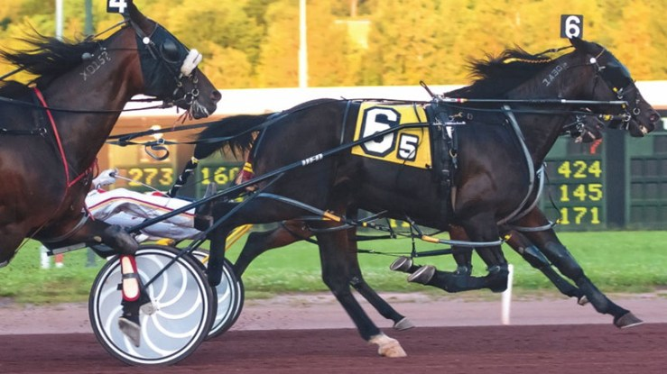 Dr Lon winning a race at Pocono Downs on July 16, 2011