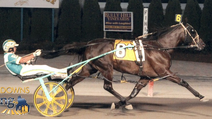 Excelerated Speed winning a race at Tioga Downs on September 29, 2014. This was her lifetime Mark of 1:52.4, she was trained for this race by Brad Irvine.