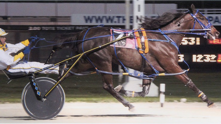 Excelerated Speed winning a race at Pompano Park on January 20, 2014