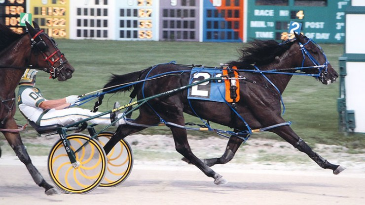 Excelerated Speed winning a race at Maywood Park on July 18, 2013