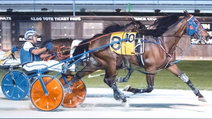 Giant Muscles winning a race at Pompano Park on May 9, 2018