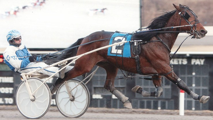 Green Peace winning a race at The Meadows on January 17, 2014.  Trained by Ernie Danks Jr. and owned by Ernie Danks Jr. and Ivar Hyngstrom