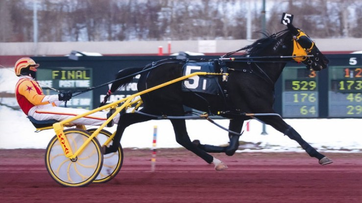 Pilgrims Haley winning a race at Pocono Downs on April 11, 2011