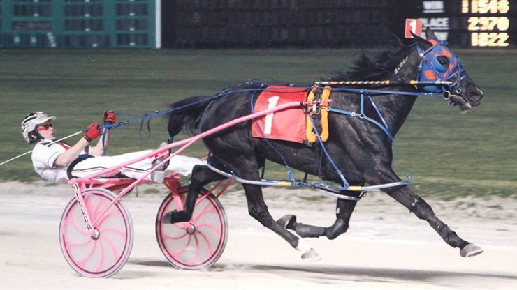Pilgrims Haley winning a race at Maywood Park on May 10, 2012