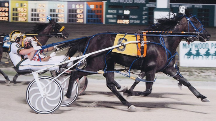 Pilgrims Haley winning a race at Maywood Park on July 7, 2012