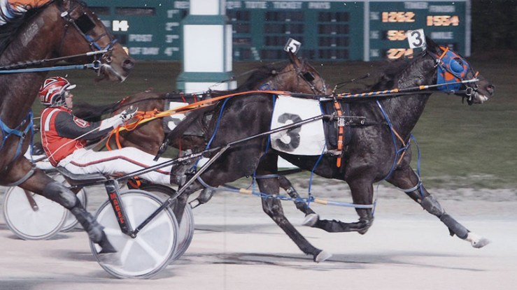 So Reserved winning a race at Maywood Park on November 9, 2012