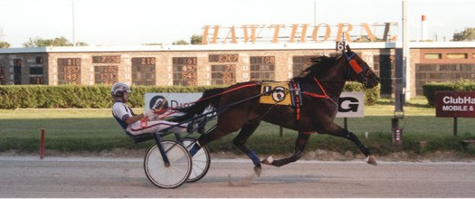 Storm Winds winning his maiden race at Hawthorne Racecourse. On June 15, 2017 Storm Winds broke his maiden at Hawthorne in 1:59.2.  I bred, broke, trained, and drove (a bit) him during his racing career.