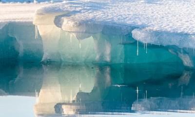 Arktik Deniz Buzu Tarihinin En Düşük İkinci Seviyesine Geriledi
