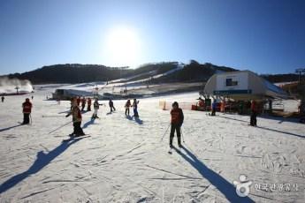 Alpensia Ski Resort 3