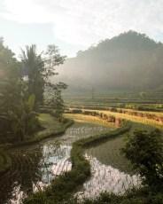 Hideout Bali 2