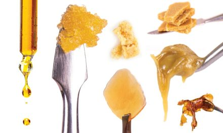 Canada to legalize marijuana concentrates