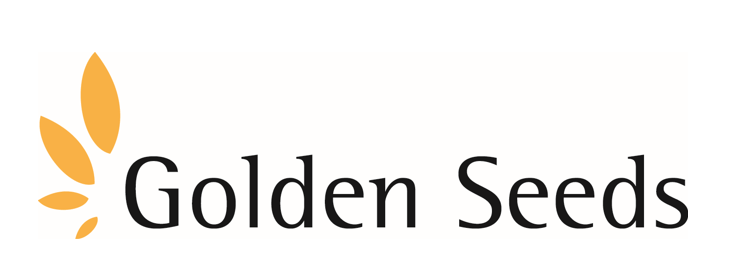 Golden seeds llc investment account for a forex trader