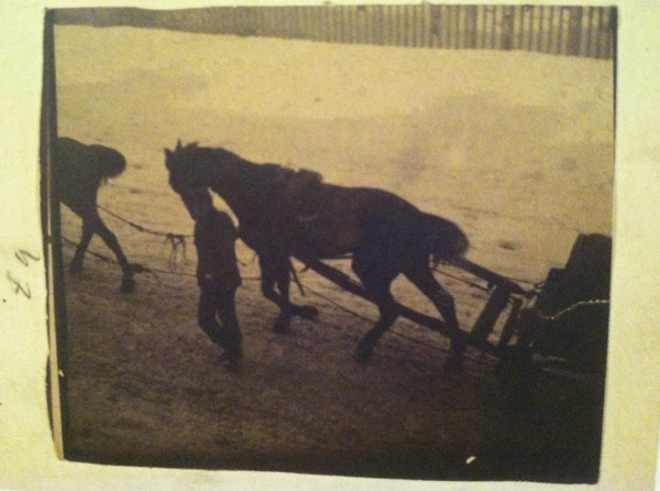 "George Hendrik Breitner, ""Horses seen from above"""