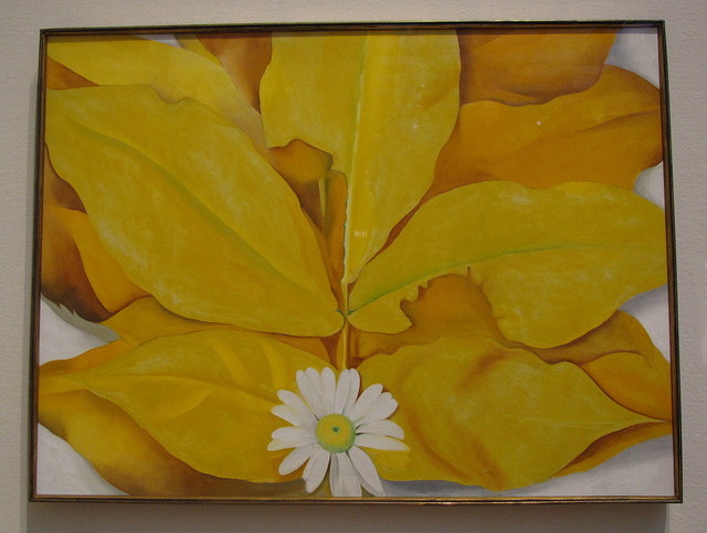 "Georgia O'Keefe, ""Yellow Hickory Leaves with Daisy"" (1928) (image via Flickr user santanartist)"
