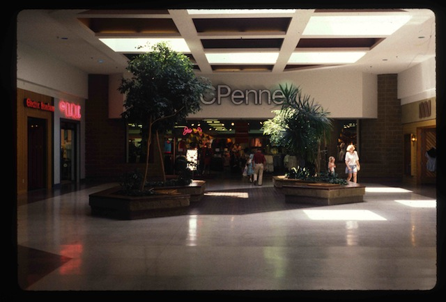"""""""Trees"""" from Michael Galinksy's project """"Malls Across America"""""""