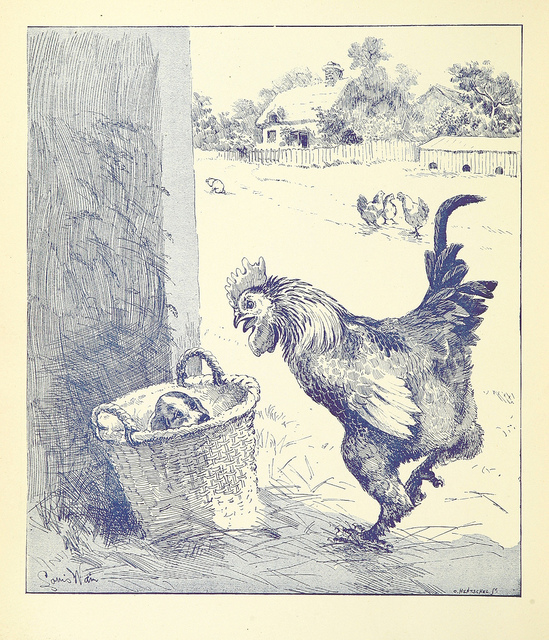 "More proof that puppies in baskets are timeless comes from this 1888 monograph, ""Our Farm. The troubles and successes thereof. The story told by F. W. P. and illustrated by L. Wain"""