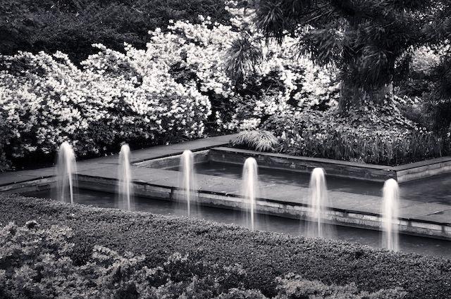 Rockefeller University New York, NY Photograph © Benjamin Dimmitt, 2013, courtesy The Cultural Landscape Foundation.