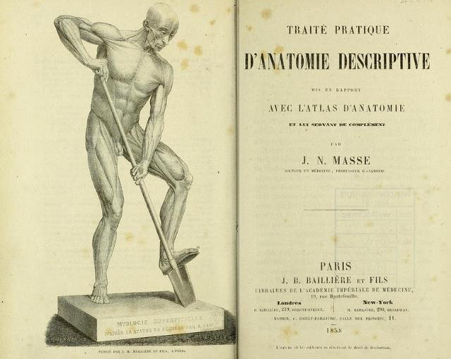 """Front page of """"Traité pratique d'anatomie descriptive"""" by J. N. Masse (1858) (via Wellcome Library)"""