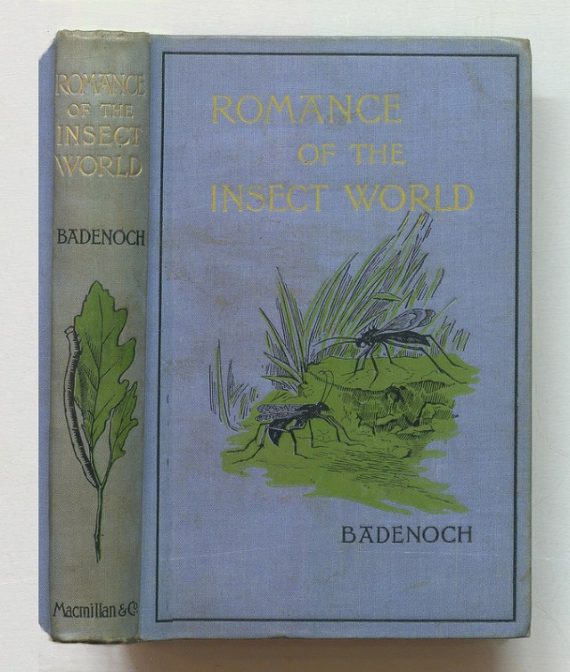 """L. N. Badenoch, """" Romance of the Insect World"""" (1893), bound in blue linen blocked in black with a painted motif (via Thomas Risher Rare Book Library)"""