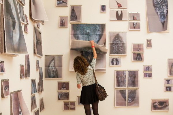 Ann Hamilton' Distorted Scans Of Natural History