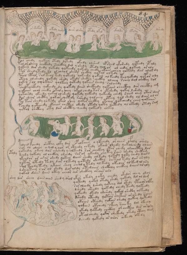 Scans Of Voynich Manuscript Medieval Book