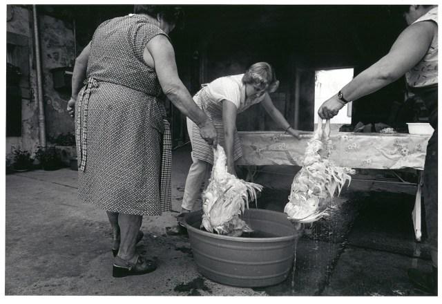Monique Jacot, Peney-le-Jorat 1988, Silbergelatineabzug, © Monique Jacot / Fotostiftung Schweiz, Winterthur