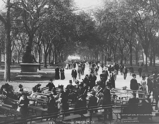 "S. J. Johnston, ""The Mall"" in Central Park (1894) (via Thomas Warren Sears photograph collection, Archives of American Gardens)"