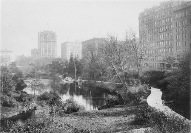 Central Park slide (via Thomas Warren Sears photograph collection, Archives of American Gardens)