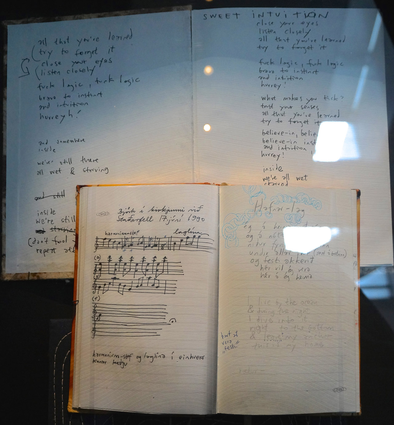 "Some of Bjork's notebooks in the ""Songlines"" portion of the exhibition (photo by Jillian Steinhauer/Hyperallergic)"