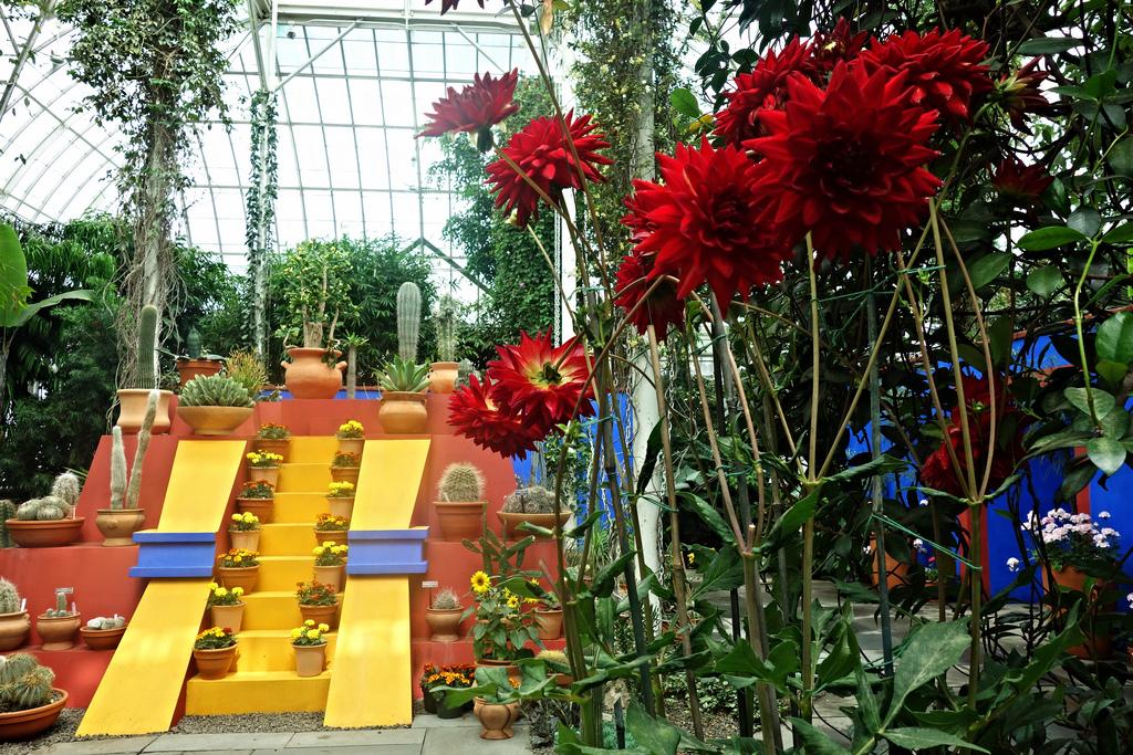 Frida Garden