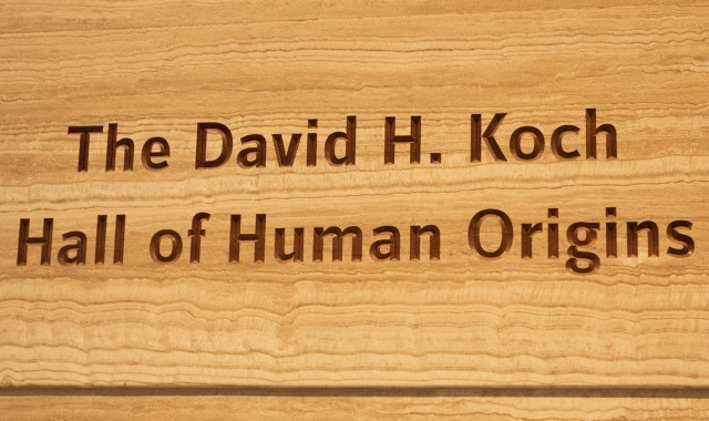 David Koch's name at the Smithsonian National Museum of Natural History (all photos by Brendan Polmer for Hyperallergic)