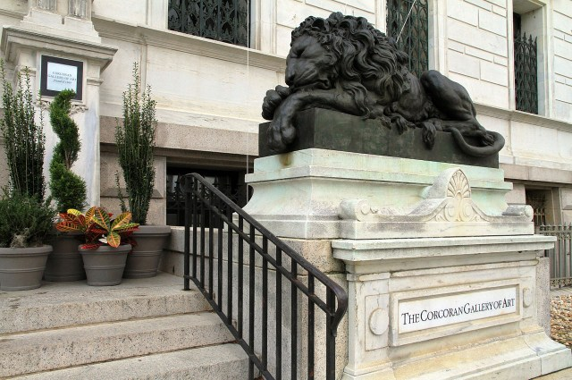 One of the lions at the entrance to the old Corcoran Gallery and School building (photo by Ingfbruno/Wikimedia Commons)