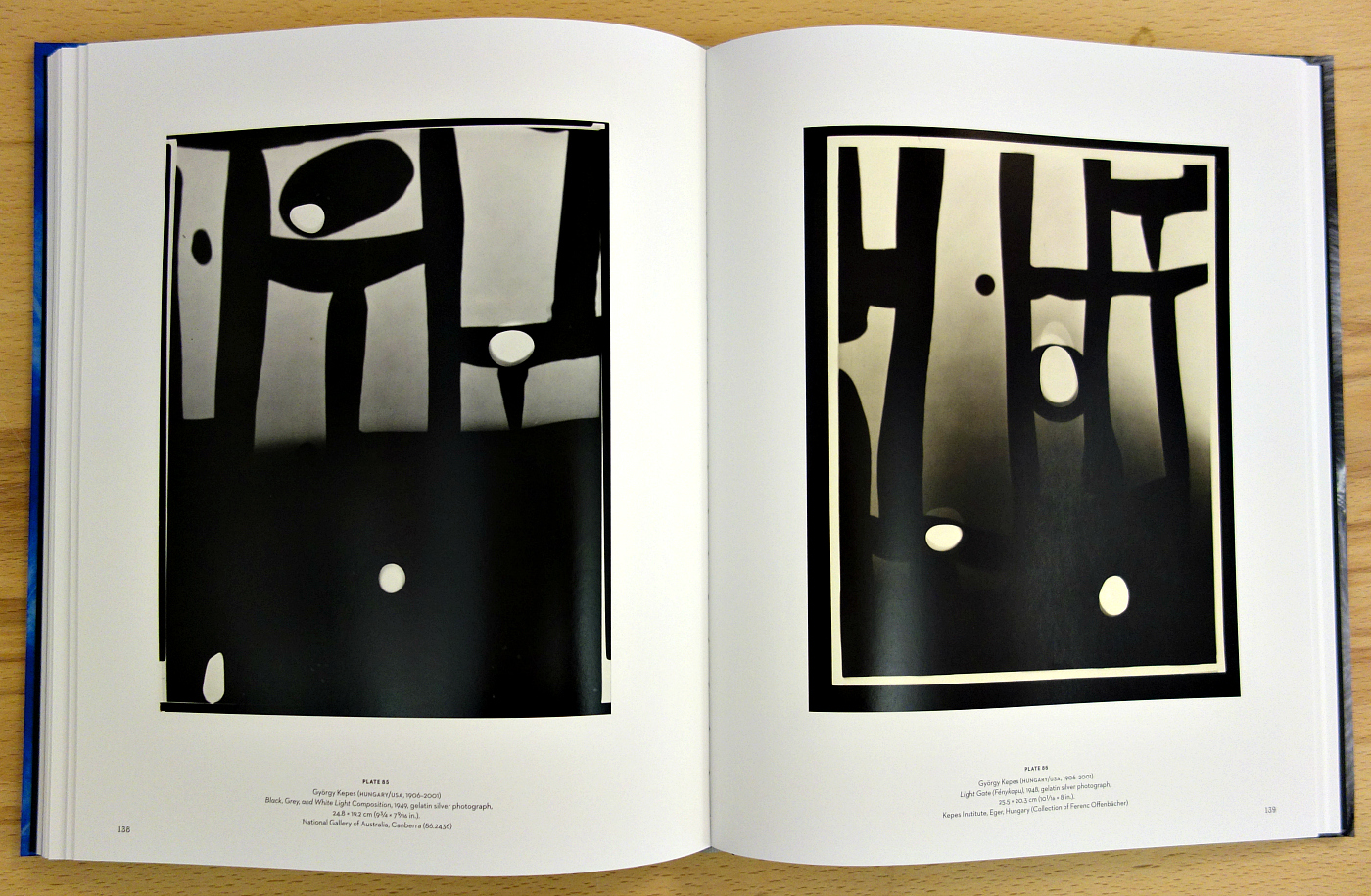 Pages from 'Emanations: The Art of the Cameraless Photograph' (photo of the book for Hyperallergic)