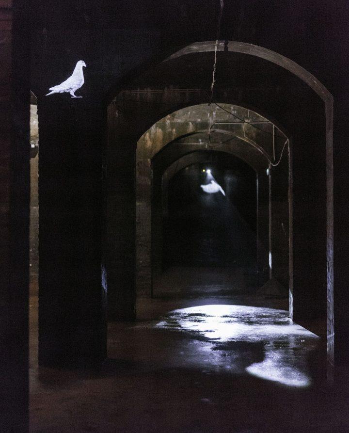 "Eva Koch, ""That Dream of Peace"" (2016), installation view"