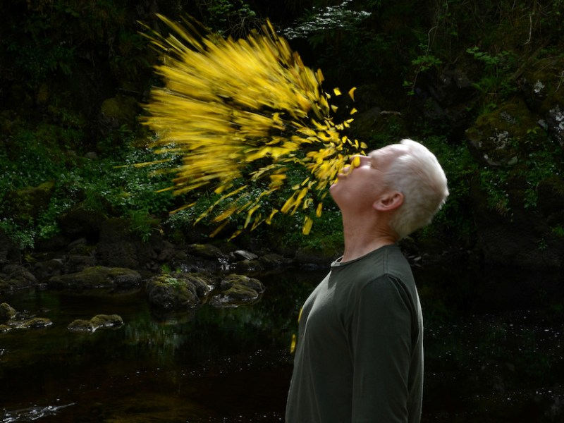 Andy Goldsworthy in Leaning into the Wind, a Magnolia Pictures release (photo courtesy of Magnolia Pictures; © Thomas Riedelsheime, all rights reserved)