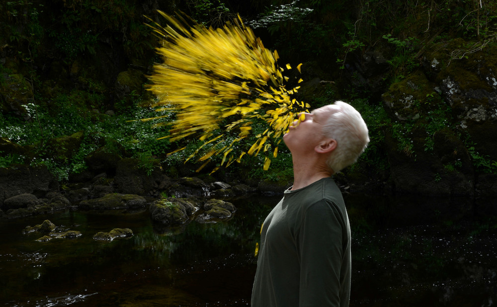 Andy Goldsworthy S Ephemeral Art And Laborious Process In