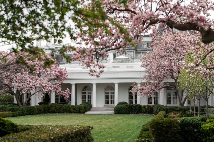 Melania Trump S Revamped Rose Garden Is Rough Around The Hedges