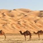 Cenni storici sull'Arabia preislamica