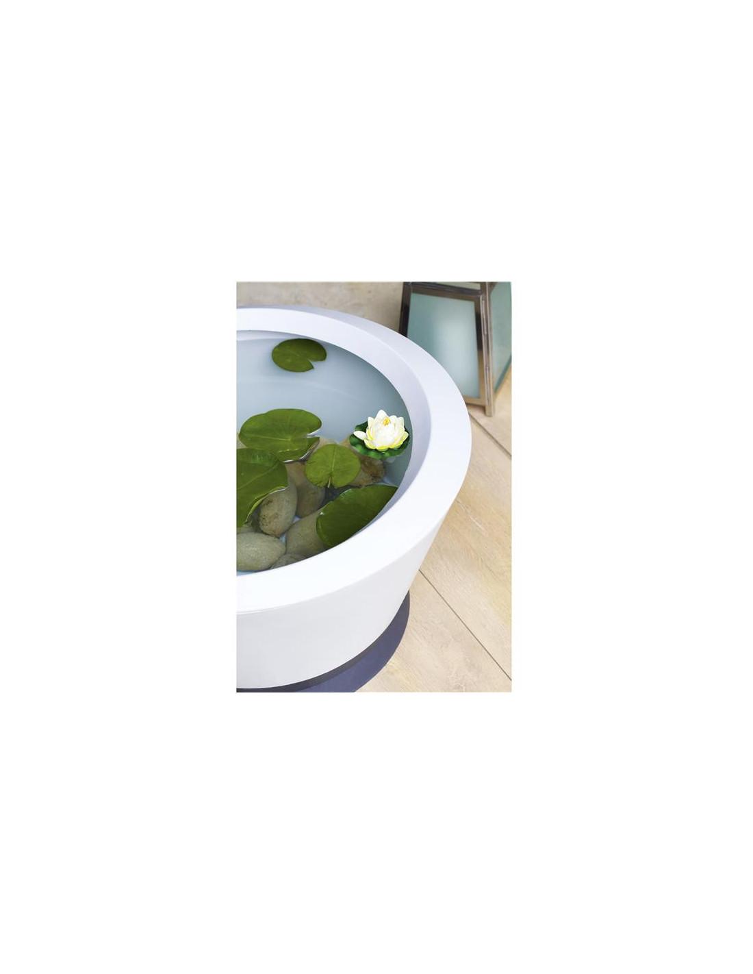 Stunning Vasque Jardin Aquatique Ideas - House Interior ...