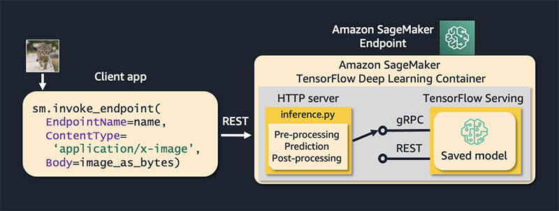 reduce computer vision inference latency using grpc with tensorflow serving on amazon sagemaker hyperedge embed image