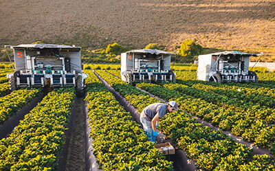 Mobile robots in agriculture